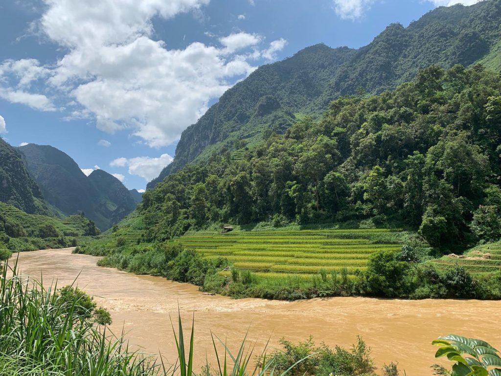 Ha Giang Loop - Río y arrozales